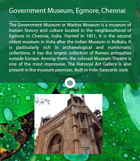 Government Museum of Chennai Egmore
