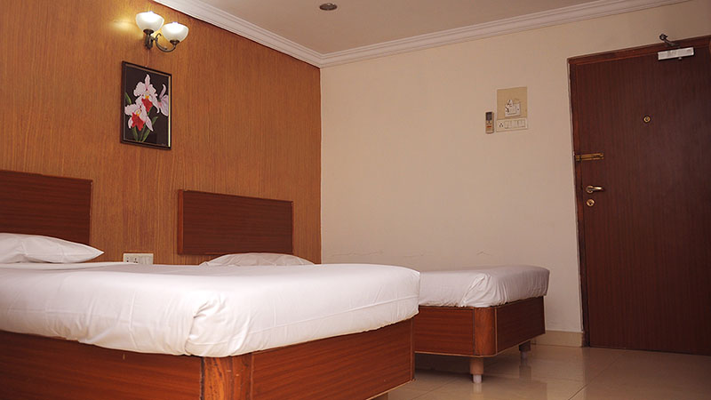 Luxurious Room in Egmore